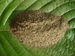 Kratom 15x Standardized Extract