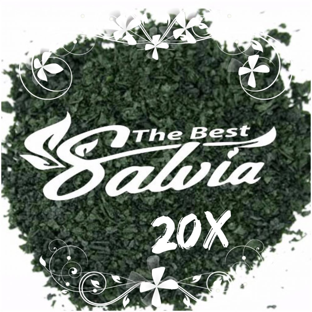 Salvia Extracts 20x